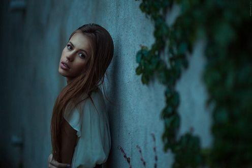 Обои Девушка с длинными волосами стоит спиной к стене