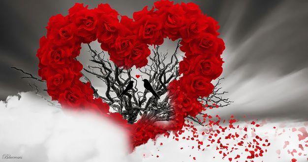 Обои На сухом дереве сидят две птицы, вокруг них сердце из роз с летящими вдаль лепестками