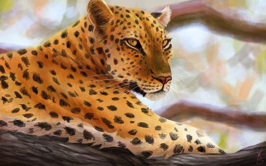 Обои Леопард лежит на дереве