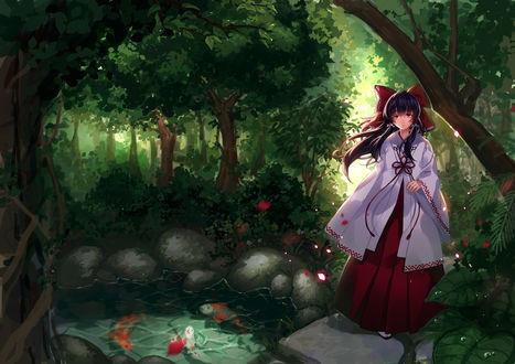 Обои Hakurei Reimu / Рейму Хакурей из игры Проект Восток / Touhou Project