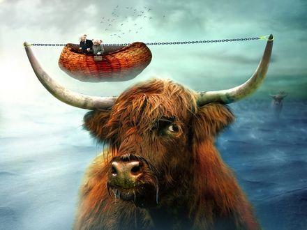 Обои Между рогов быка натянута цепь, на которой привязана корзина, в которой два странных существа