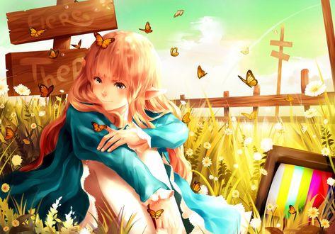 Обои Девушка сидит в траве в окружении бабочек, by 89pixels-d5