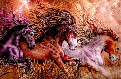 Обои Скачущие три лошади, by Fajralam
