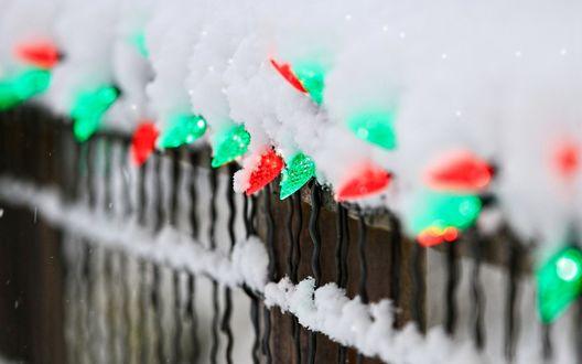 Обои Красные и зеленые новогодние гирлянды под снегом на заборе