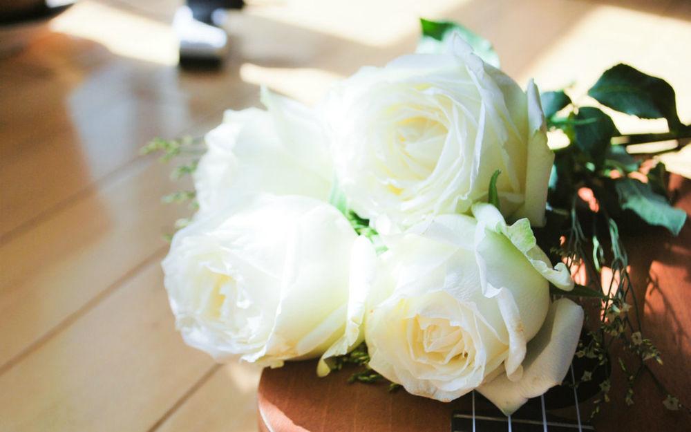 Белые розы на рабочий стол обои