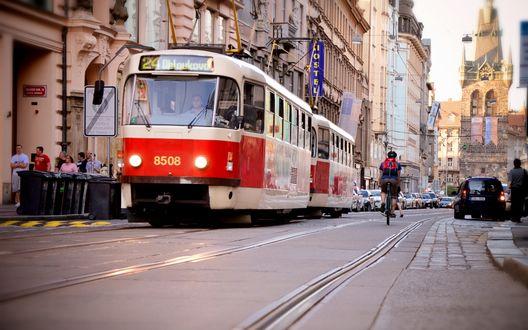 Обои Трамвай, идущий по городским улицам, Прага, Чешская Республика / Prague, Czech Republic