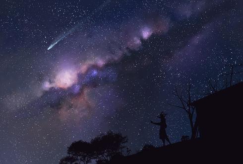 Обои Силуэт человека, у которого на шее сидит ребенок, стоящего на крыше, на фоне ночного звездного неба