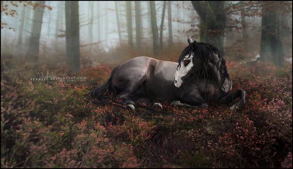 Обои Лошадь с нарисованным черепом на морде в осеннем лесу, art by Yewrezz