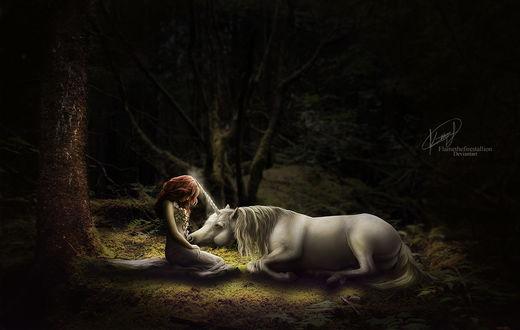Обои Единорог и девушка в ночном лесу, работа AlexLibby