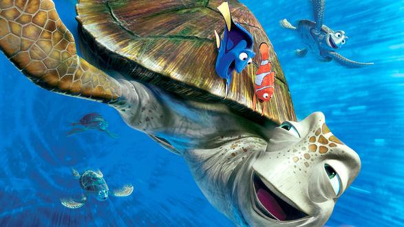 Обои Герой мультфильма (В поисках Немо)/Finding Nemo / Марлин, рыбка клоун плывет сверху на черепахе