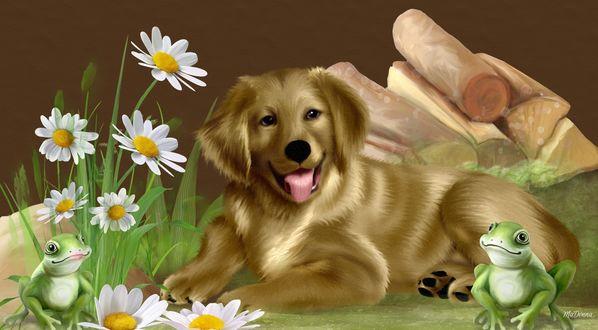 Обои Собака лежит возле поленницы дров и цветущих ромашек. Рядом сидят зеленые лягушки, автор MaDonna
