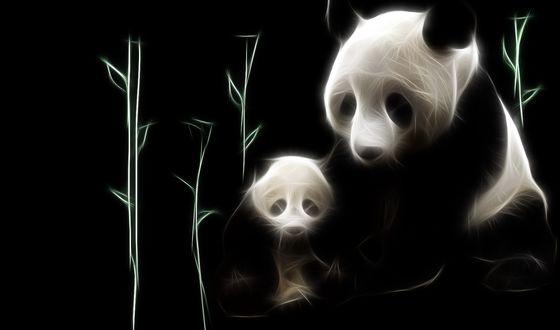 Обои Фрактальный образ панды с детенышем