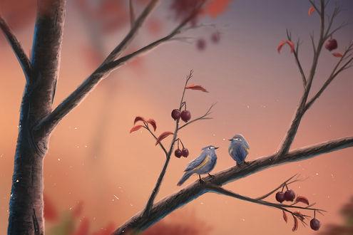 Обои Две птички сидят на веточке с осенними листьями и ягодами, by sylar113