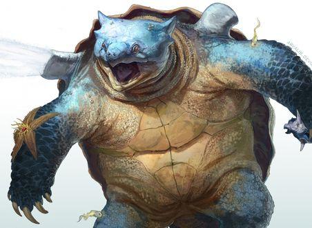 Обои Огромная злобная черепаха под водой, в окружении морской звезды и рыбок
