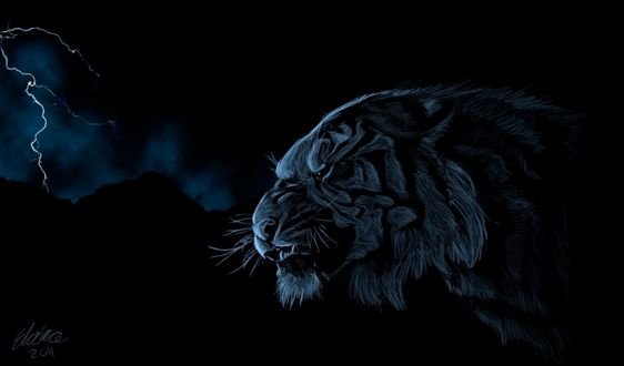 Обои Голова тигра на фоне ночного неба со сверкающими молниями