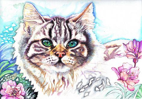 Обои Рисунок кошки с абстрактными цветами вокруг нее