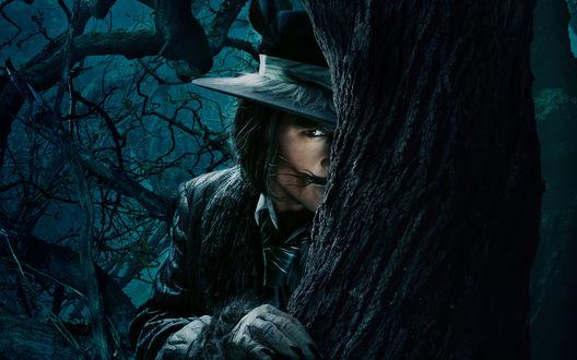 Обои Фильм Into the Woods / Чем дальше в лес, Джонни Депп / Johnny Depp в образе волка выглядывает из-за дерева