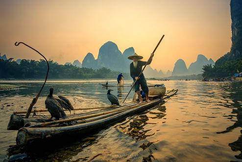 Обои Старик плывет на лодке, на которой сидят птицы, река Лицзян, Китай / China, by Bobby Joshi