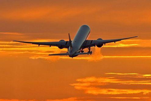 Обои Самолет в небе