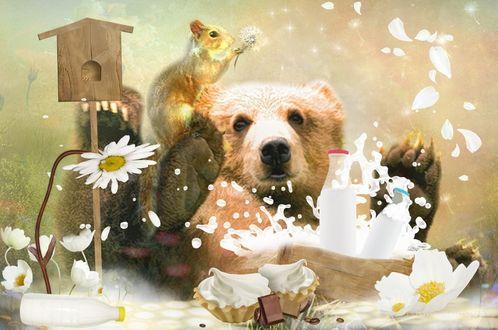 Обои Белка моет одуванчиком медведя, который сидит в ванночке с молоком и плещется, поднимая брызги