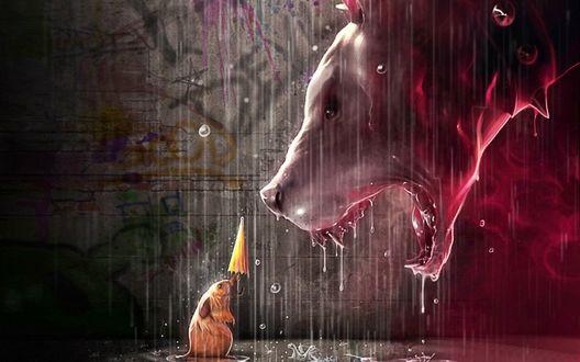 Обои Маленькая мышка протягивает злобному зубастому псу, с морды которого стекают капли проливного дождя, нераскрытый зонтик