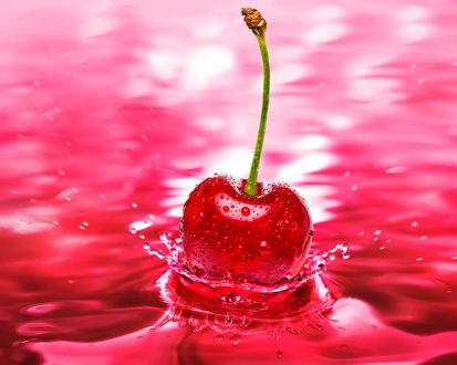 Обои Красная вишенка упала в красную жидкость, подняв кучу брызг