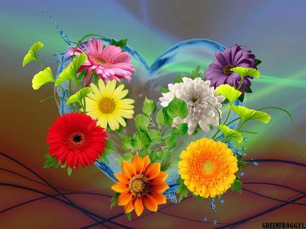 Обои Водяное сердце в разноцветных цветах, GREENFROGGY1