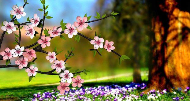 Обои Весенние цветы на ветке на фоне природы
