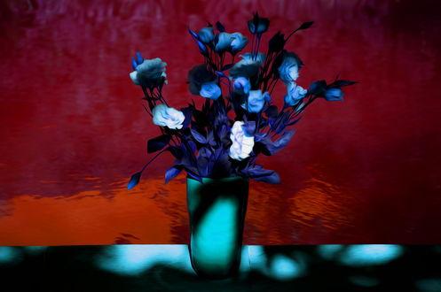 Обои Букет голубых роз в вазе, стоящей на столе