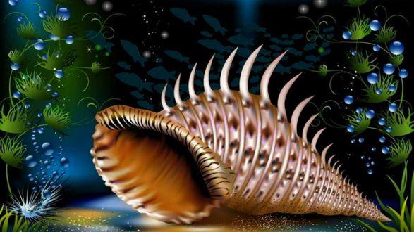 Обои Морская раковина лежит между водорослей на дне, с которого к поверхности поднимаются пузырьки воздуха, над ней плавают рыбки