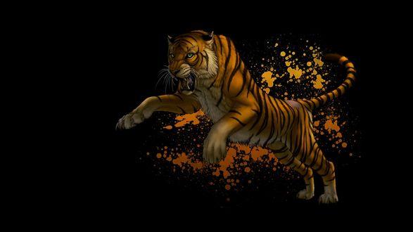 Обои Прыгающий тигр с абстракцией на черном фоне