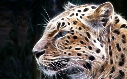 Обои Фрактальный образ леопарда