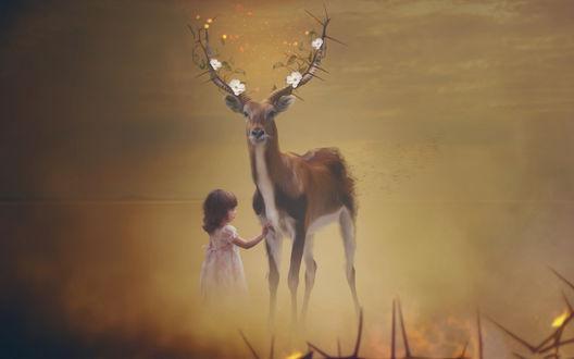 Обои Девочка стоит около оленя с цветущими рогами, by MachiavelliCro