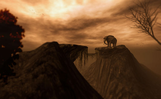 Обои Слон, стоящий на вершине горы на фоне вечернего небосклона с цветными облаками