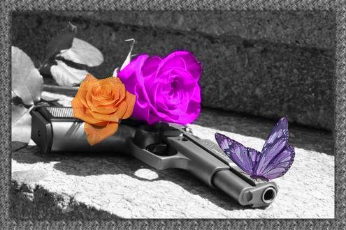 Обои Конец войне. На пистолете лежат розы и сидит бабочка