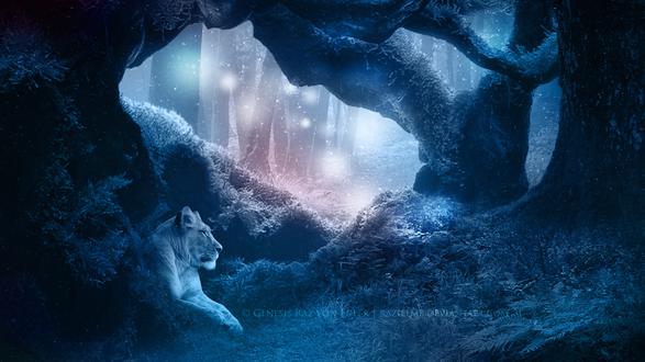 Обои Львица лежит в ночной чаще леса в магическом сиянии светлячков, by RazielMB