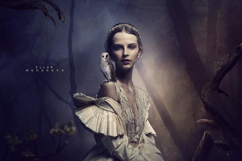 Обои Девушка в вуали с белой совой на плече в темном лесу, by Ellen Gegogfx