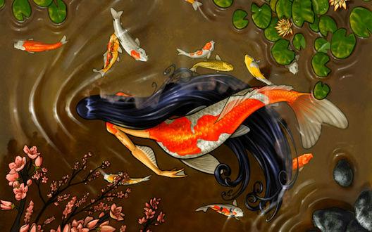 Обои Девушка рыба с длинными черными волосами, плавает в пруду среди экзотических рыбок, больших листьев водных растений, под нависающими цветущими ветками деревьев