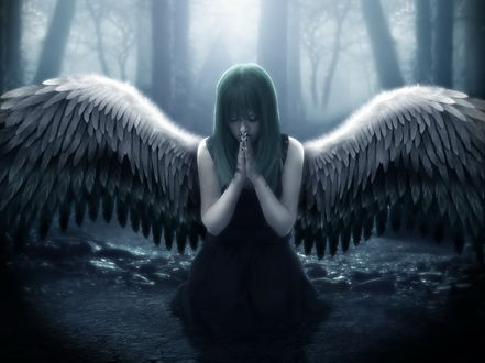 Обои Девушка ангел, сложила руки в молитве, стоит на коленях среди леса