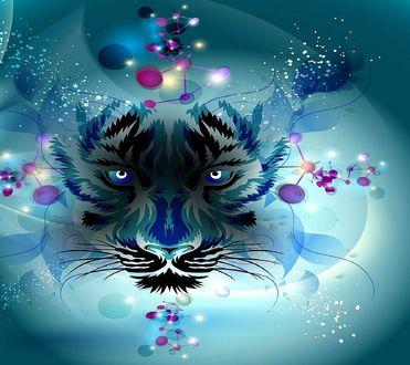 Обои Красивая мордочка тигра на фоне абстракции