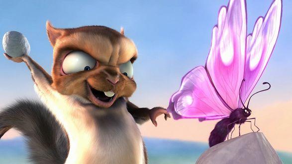 Обои Злая белка хочет ударить камнем бабочку, сидящую на скале