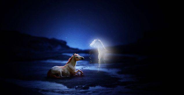 Обои К лежащей на земле лошади явился ее Ангел, в виде светящейся лошади