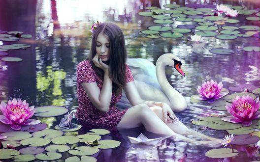 Обои Девушка сидит в пруду возле цветущих лилий, около нее белый лебедь, лягушка и бумажный кораблик
