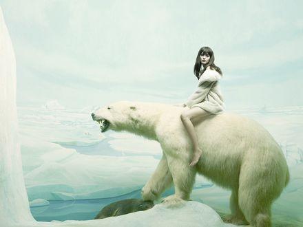 Обои Девушка сидит верхом на белом медведе