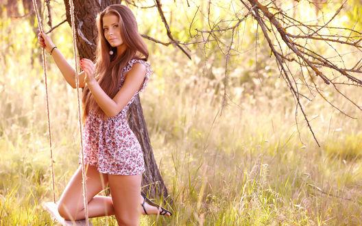 Обои Девушка на качелях в летнем лесу