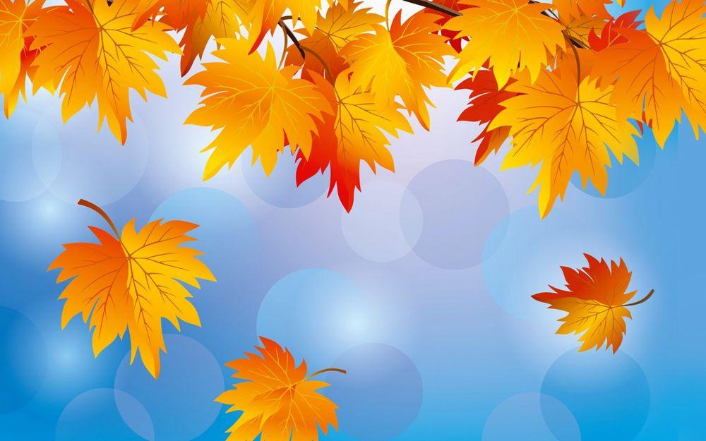 обои на рабочий стол кленовые листья осенью 14820