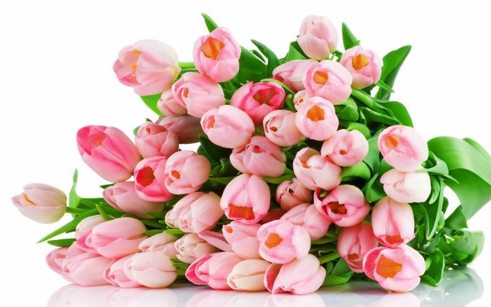 Комплект Пионовая роза сделано своими руками Евгения