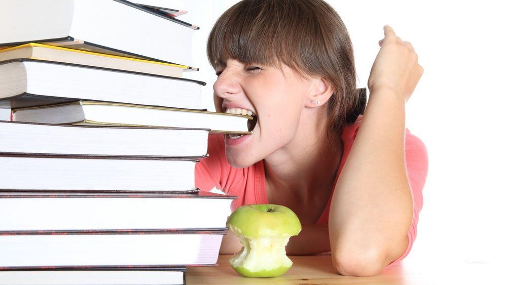 Обои для рабочего стола Двушка грызет гранит науки и кушает яблоко