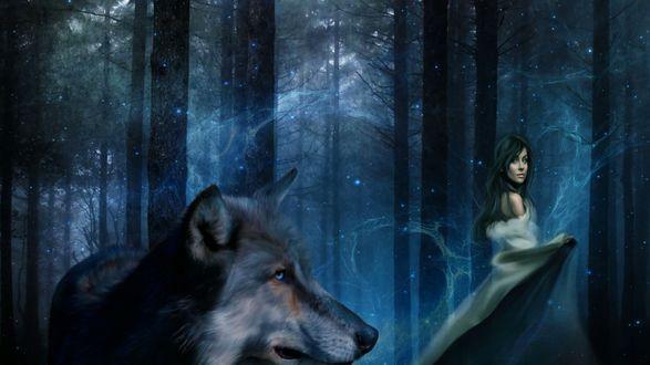 Обои Девушка и волк в таинственном лесу
