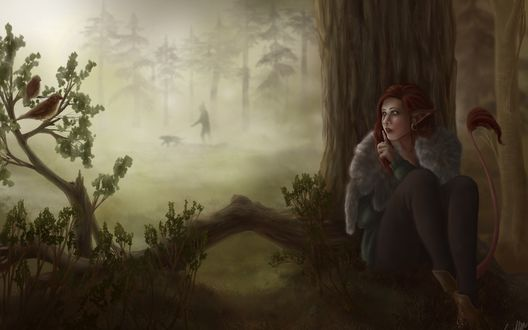 Обои Девушка-лиса прячется в лесу, за деревом от охотника с собакой